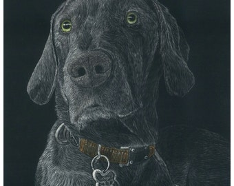 Pet scratchboards made to order