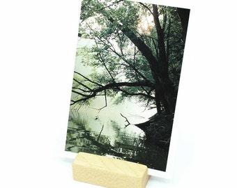 Photo Holder, Postcard Holder, Postcard Display, Photo Display, Picture Display, Keepsake Memory, Wood Business Card Holder
