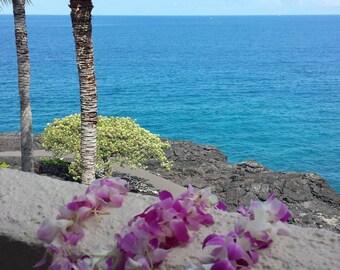 Pacific, Kona, Hawaii, lei, Big Island