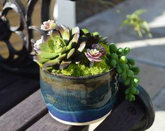 Succulent Arrangement Pottery / Succulent Pottery, Artificial, Faux, Ceramic, Planter, Succulent Table Decor, Succulent Gift, Succulent Pots