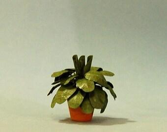 1 inch scale miniature-Prayer Plant
