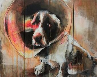 Un chien et sa collerette