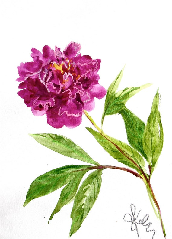 Flower painting -Deep Magenta Peony - original watercolor- by Gretchen Kelly