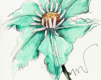 Clematis Original Watercolor Art Painting Pen and Ink Watercolor Hand Painted Clematis Flower Green