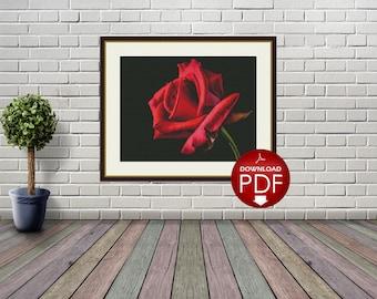 Red Rose Counted Cross Stitch Pattern - Large Cross Stitch Chart - Cross Stitch Flower - Floral Cross Stitch - PDF File