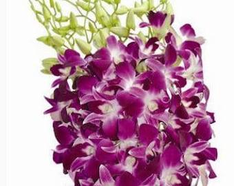 FRESH Purple Dendrobium Orchid, Purple Orchid, Wedding Orchid, Real Orchid, Dendro, Wedding Flowers, Fresh Flowers, Fresh Orchid, Purple