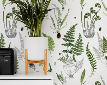 Ferns White removable wallpaper / Botanical peel and stick wallpaper wall mural / nature and plants temporary wallpaper 504