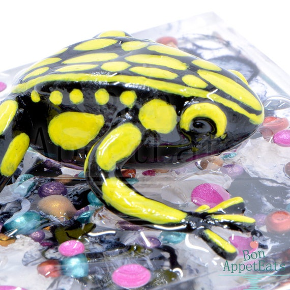 Yellow and Black Frog on Resin Fluid Art Wall Sculpture