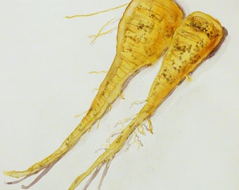 Parsnips Kitchen Art ||  Cooking || Vegetables  || Housewarming || Art print download