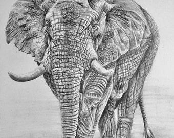 "African Elephant, Original Pencil Drawing, Animal Art, Home Decor 14.5""x 10.5"" African Elephants Art,  Elephant Drawing"
