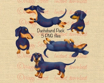 Dog clipart. Dog clip art. Dachshund clipart. Dachshund clip art Animal clipart Commercial Printable art digital PNG files sausage dog puppy