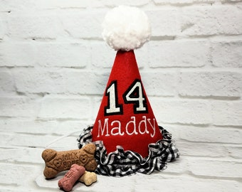 Dog Birthday Hat, Dog First Birthday, Red Dog Party Hat, Gingham Birthday Hat, Dogs 1st Birthday, Gotcha Day Hat, Pet Party, Red Party Hat