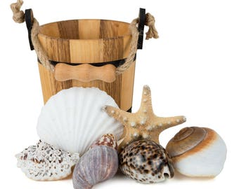 Sea Shells at the Seashore - Wooden Bucket and Shell Set - Montessori Learning Toy - Treasure Basket