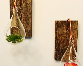Terrarium, Set of two  Barnwood and Copper Wall Terrarium Hangers