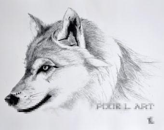 Wolf Portrait #001