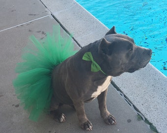Green Dog Tutu, Pet Tutu, Dog Skirt, Dog Clothes, Dog Accessories, Cute Dog Outfit, Tutus and Hair Bows,Dog Photo Props, Dog Costume