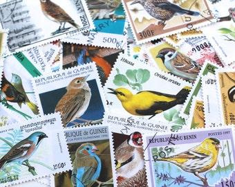 15 x Vintage Bird Postage Stamps Art Botanical Stamps Junk Journal All Different Altered Art Paper Lot Scrapbooking Paper Supplies