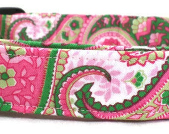 Watermelon Preppy Pink and Green Paisley Dog Collar