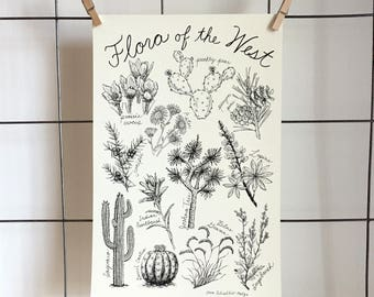 Flora of the West - 11 x 17 archival print made from original hand drawing
