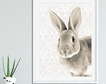 Soft and Sleepy Bunny Print
