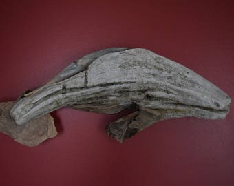 Driftwood Manatee - (Great wall decor and gift!)