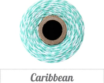 10 yards/ 9.144 m Caribbean - Light Teal Blue & White Twine, Bakers Twine