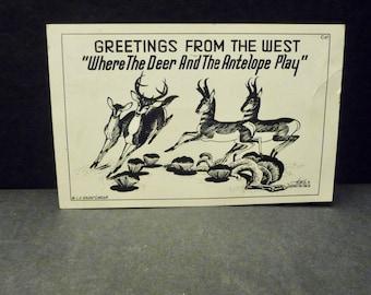"L.H. Larsen Hoke Denetsosie Navajo Artist Postcards- Greetings from the West""Where the Deer& the Antelope Play"