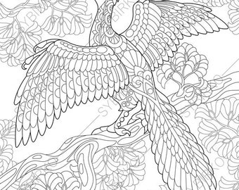 Archeopteryx Dinosaur Dino Coloring Pages Animal Book For Adults Instant Download Print