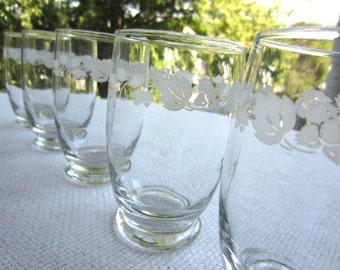 Vintage White Gooseberry Tumbler Glasses set of 6