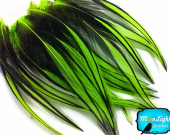Rooster Feathers, 10 Pieces - LIME GREEN Laced Long Rooster Cape Feathers : 2204