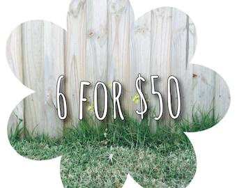 6 Bibs for 50