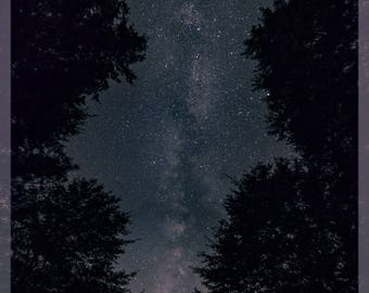 Night Sky Photography - Milky Way Galaxy Framed by Trees