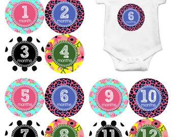 Monthly Baby Stickers Baby Month Stickers Baby Girl Monthly Shirt Stickers Monthly Baby Sticker Girl Baby Shower Photo Prop Milestone 1078