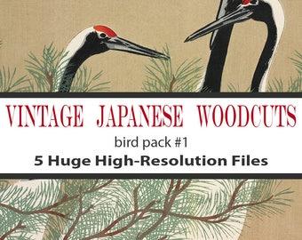 Woodblock Bird, Set of 5, Download, Woodblock Print Bird, Vintage Illustration, Commercial Use, Downloadable Prints, Japanese Woodblock, Art