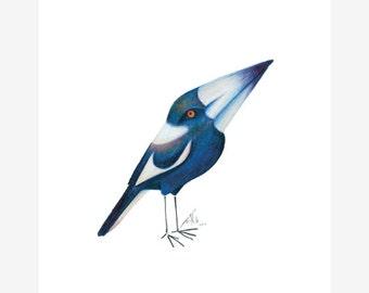 Australian Magpie Bird Print A5