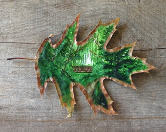 West Deane Willows | Leaf Art | Canadian Art | Leaf Painting | Willow | Toronto | Etobicoke | Nature | Tree | Watershed