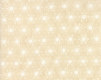 Berry Merry 30475-11 by Basic Grey For Moda