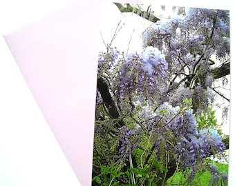 """The Wisteria """"post card and matching envelope, from one of my photos."""""""