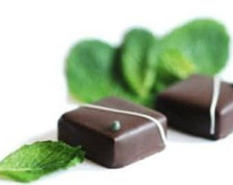 Chocolate Mint Fresh Hand Dipped Charcoal Incense 20 Sticks Home Fragrance Handmade Gift
