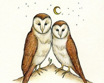 barn owl soul mates original ink and colored pencil drawing