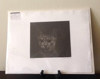 Original Cat Etching by British Artist Chris Salmon / Chris Salmon Cat Original Print / CAT ART / Cat Print