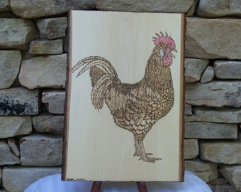 Large Rooster Woodburning Pyrography