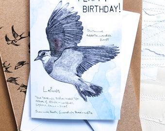 Flappy Birthday! A lapwing birthday card