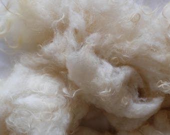 Wool of white Ouessantschaf, washed