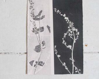 Small original botanical monoprint Modern nature print Wild orchid meadow Influenced by Japanese design & Art Nouveau
