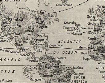 """ANTIQUE PRINT Vintage World Plants Map bookplate - 9 1/2"""" x 6 1/4"""" actual vintage"""