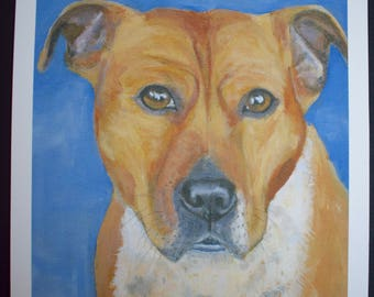 STAFFORDSHIRE BULL TERRIER 'staffy' A4 giclee print from an original acrylic artwork by Sara Tuckey