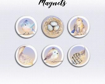 Set of 6 Bird themed magnet set