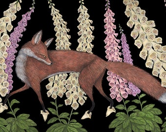 Foxgloves - Print