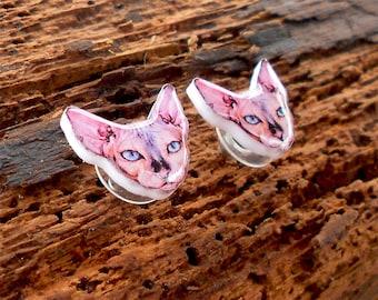 Sphynx cat earrings Earrings Sphynx cat, Sphynx pet jewelry, Animal earrings, Sphynx cat jewelry, earrings Canadian Sphynx.